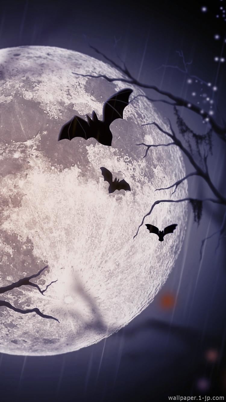 月のイラストスマホ壁紙 かっこいいネコ待ち受け